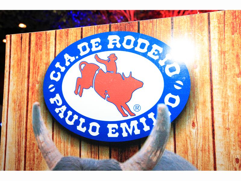 RODEO COUNTRY BULLS - Eloisa Mattos